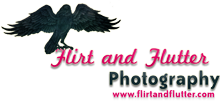 Flirt and Flutter - Exclusive Ottawa Photographer specializing in Photography for Women by Women